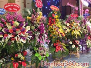 hoa khai truong, hoa_khai_truong, shop hoa (1)