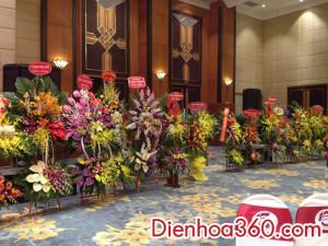 hoa khai truong, hoa_khai_truong, shop hoa (2)
