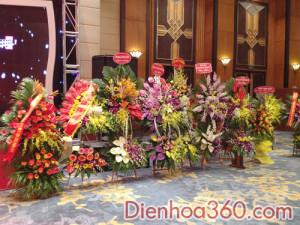 hoa khai truong, hoa_khai_truong, shop hoa (3)