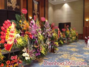 hoa khai truong, hoa_khai_truong, shop hoa (4)