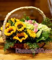 Điện hoa 0803, Mẫu hoa đẹp 0803