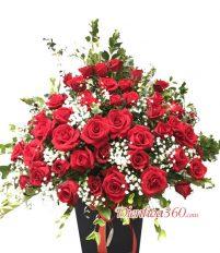 Màu sắc hoa hồng khác nhau có ý nghĩa gì?