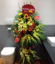 Dienhoa360, Dien hoa, Điện hoa là gì, vì sao nên dùng điện hoa