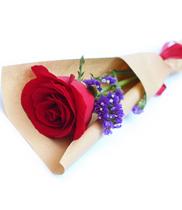Hoa tươi, Chơi hoa theo phong thủy