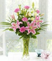 hoa tươi, vẻ đẹp của hoa tươi