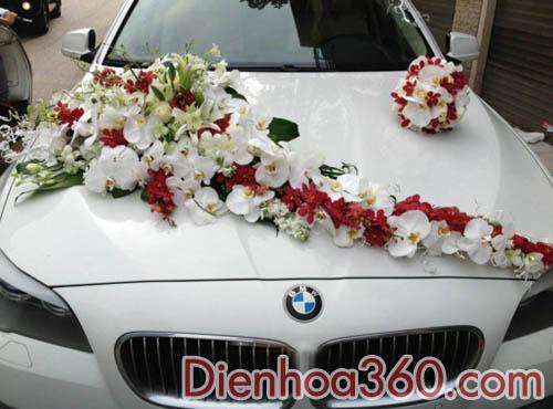 Xe hoa cưới kết lan hồ điệp trắng-ly trắng-mokara đỏ-hồng trắng