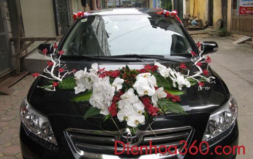 Xe hoa cô dâu kết lan hồ điệp trắng-môn đỏ