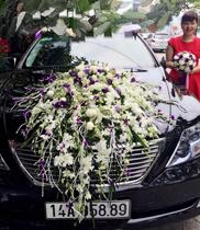 Xe hoa màu trắng tím – xe cô dâu hồng trắng