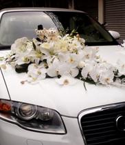 Xe hoa cưới đẹp trang trí lan hồ điệp-hồng trắng-ly trắng