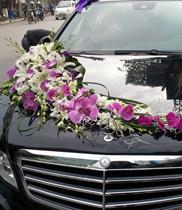 Địa chỉ trang trí xe hoa – xe hoa lan hồ điệp trắng tím