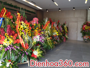 hoa chuc mung, dien_hoa,hoa-khai-truong (5)