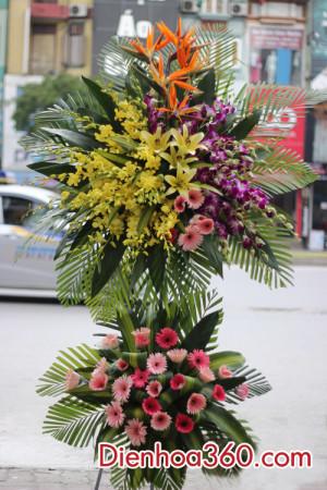 hoa chuc mung, lang hoa chuc mung,flower