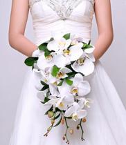 hoa-cuoi-cam-tay-bang-hoa-lan   Dienhoa360