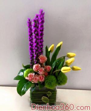hoa dinh ky, mau hoa van phong