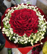 Hoa sinh nhat, flower   Dienhoa360