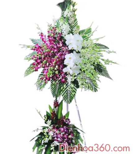 Hoa tươi online-lãng hoa tươi