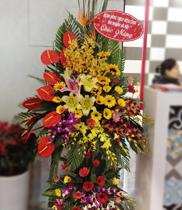 Địa chỉ đặt Hoa chúc mừng, shop Hoa tươi online