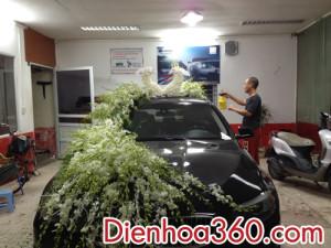 Xe hoa con công, trang trí xe hoa con công | Dienhoa360