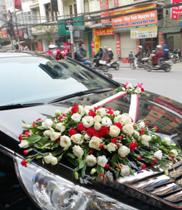 Xe hoa cưới đẹp rẻ