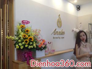 Dien_hoa, hoa chuc mung khai truong, gio hoa (4)