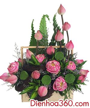 gio hoa sen, ban hoa sen