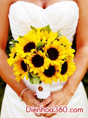 hoa cam tay co dau dep, hoa huong duong cam tay co dau