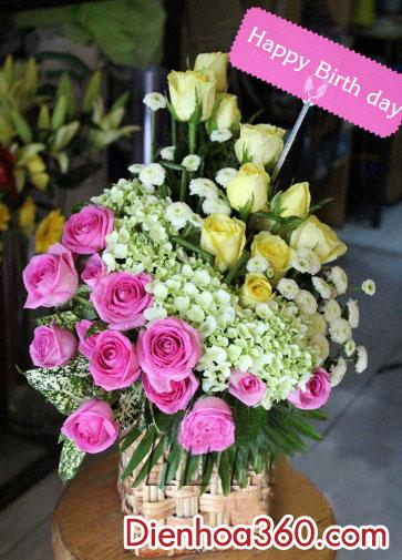 Gio hoa gia re, hoa sinh nhat re dep, mau hoa gio dep