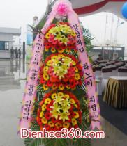 Mẫu hoa chúc mừng đẹp | hoa chuc mung