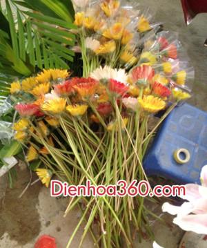 cach cam lang hoa chuc mung (3)