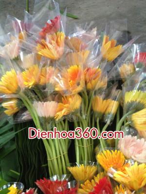 cach cam lang hoa chuc mung (5)