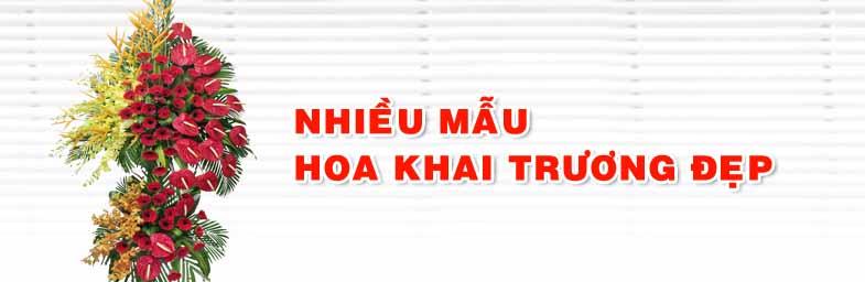 hoa_khai_truong
