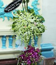 Hoa viếng đám tang CB37