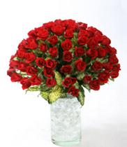 Mẫu hoa tươi đẹp