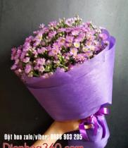 ý nghĩa hoa thạch thảo, ý nghĩa các loài hoa