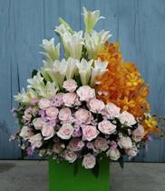 Giỏ hoa loa ken-mokara-hoa sinh nhật đẹp