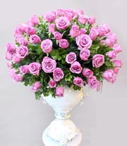 Bình hoa hồng tím – quà tặng sinh nhật đẹp