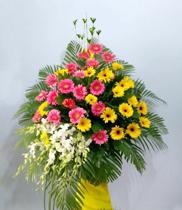 Hoa chúc mừng tất niên – hoa tươi