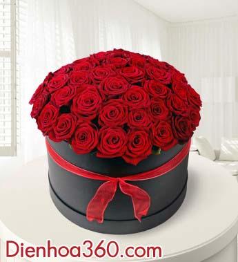 Hoa Valentine 1402, hoa hong do, hoa tinh yeu, hoa sinh nhat