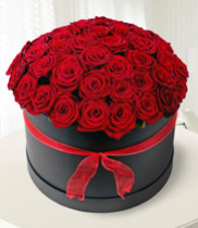 Hoa Valentine 14/2, hoa hồng đỏ, hoa tình yêu