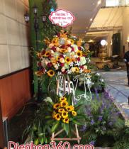 Ngôn ngữ hoa cẩm tú cầu – ý nghĩa các loài hoa