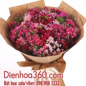 Hoa phăng xê | hoa giá rẻ | hoa tươi