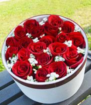 Hoa ngày tình nhân | Hoa tặng ngày Valentine | Hộp hoa Valentine