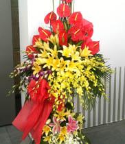 Lãng hoa chúc mừng khai trương | hoa tặng văn phòng mới
