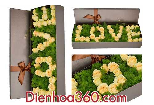 hop hoa hong kem dẹp