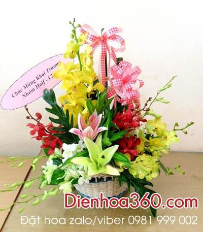 Hoa tang sinh nhat, hoa tuoi gia re, hoa ly