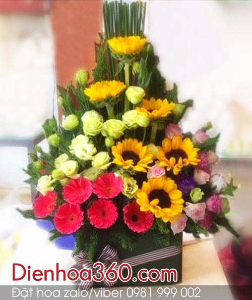 giỏ hoa hướng dương, hoa đồng tiền