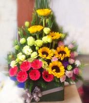 Giỏ hoa hướng dương | hoa đồng tiền | hoa sinh nhật