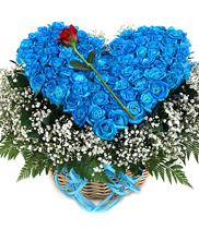 Giỏ tim | hoa hồng xanh | hoa tươi