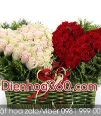 Ý nghĩa của hoa hồng khi tặng hoa sinh nhật