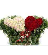 Hoa hình tim đẹp | hoa tặng sinh nhật | hoa hồng